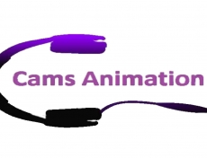 Cams animation